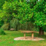 Ferienanlage Teichwiesn – Romatische Plätze rund um den Teich