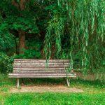 Ferienanlage Teichwiesn – Sitzgelegenheiten um den Teich